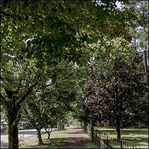 dadeville residentail sidewalk