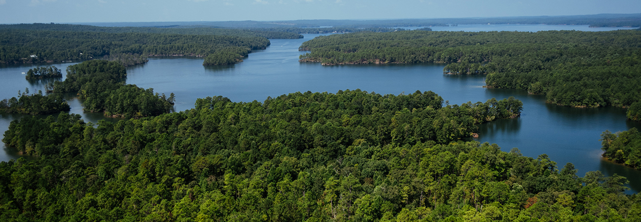 aerial lake martin